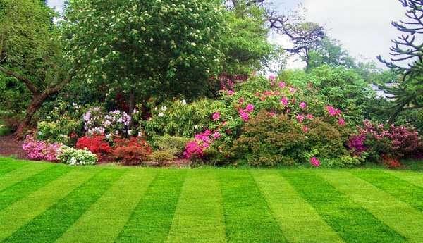 """Los 10 accesorios """"top"""" para el diseño de su jardín"""