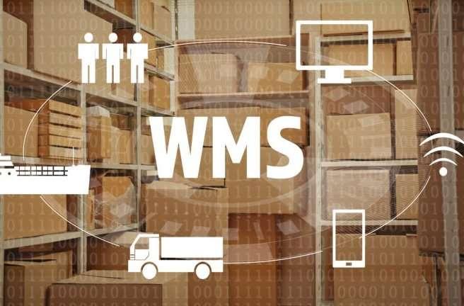 Plataforma WMS Independiente o Basada en Web: ¿Cuál Elegir?